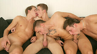 An Orgy Of Cock Sucking - David Gold, Chester Pool, Patrik Jensen & Thomas Fiaty